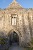 Última luz del día en la abadía de Muckross cerca de Killarney Imagen de archivo