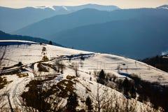 Última neve que derrete em inclinações do monte Paisagem da montanha O tempo de mola… aumentou as folhas, fundo natural imagem de stock royalty free