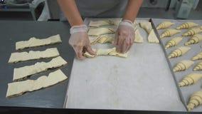 Última preparação antes de cozer Os croissant de vitrificação do padeiro com a lavagem do ovo que trabalha em sua cozinha, fazem  Foto de Stock Royalty Free