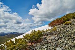 Última primavera en montañas La nieve no ha deshelado todavía kolyma imagen de archivo