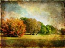 Último otoño fotos de archivo libres de regalías