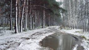 último otoño, la primera nieve Fotografía de archivo libre de regalías