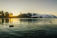 Último Tekapo durante invierno Fotografía de archivo libre de regalías