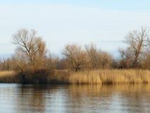 Últimos lugares selvagens em lagos imagem de stock royalty free