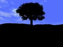 Única árvore 5 Imagem de Stock Royalty Free