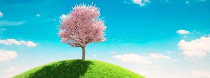 Única árvore de florescência na mola rendição 3d Imagens de Stock