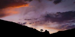 Única árvore no por do sol mostrada em silhueta na cordilheira com céus da história Foto de Stock