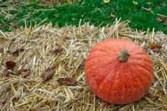 Única abóbora na decoração Autumn Fall Seasonal da exploração agrícola do monte de feno imagens de stock royalty free