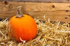Única abóbora na decoração Autumn Fall Seasonal da exploração agrícola do monte de feno imagem de stock