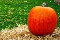 Única abóbora na decoração Autumn Fall Seasonal da exploração agrícola do monte de feno fotografia de stock royalty free