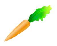 Única cenoura com folha brilhante Fotos de Stock Royalty Free