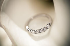 Única faixa de casamento na flor branca Foto de Stock Royalty Free