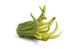 Única fruta coa de limão apontado inteira imagens de stock royalty free