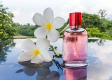 Única garrafa do perfume perfumado cor-de-rosa doce Foto de Stock Royalty Free