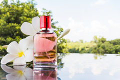 Única garrafa do perfume perfumado cor-de-rosa doce Imagens de Stock Royalty Free