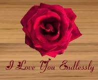 Única grande Rosa vermelha em um fundo de madeira ilustração royalty free