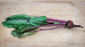 Única raiz da beterraba com verdes na madeira imagens de stock royalty free