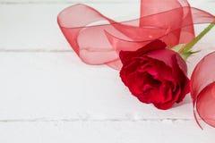 Única rosa do vermelho com a fita vermelha de organza no fundo de madeira branco Imagens de Stock