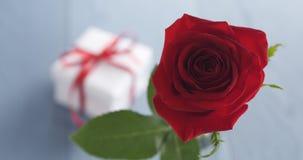 Única rosa do vermelho no vidro com a caixa de presente na tabela de madeira azul Imagens de Stock