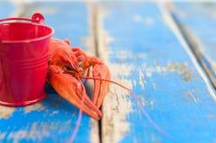 Únicas lagostas fervidas vermelhas inteiras atrás da cubeta vermelha pequena vazia do metal imagens de stock royalty free