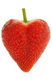 Únicas morangos doces suculentas gordas maduras frescas Imagem de Stock