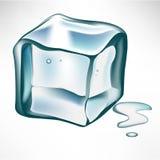 Único cubo de gelo Fotos de Stock Royalty Free