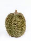 Único durian inteiro Imagens de Stock