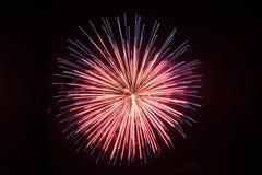 Único fogo de artifício bonito no vermelho Fotografia de Stock Royalty Free