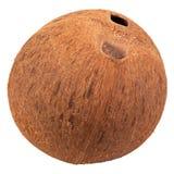 Único furo especial do ot da diferença do escudo do coco fotos de stock