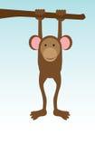 Único macaco ilustração stock