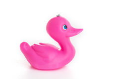Único pato de borracha cor-de-rosa Fotos de Stock Royalty Free