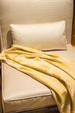 Único sofá da tela Imagem de Stock Royalty Free
