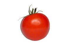 Único tomate Imagem de Stock Royalty Free