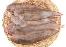 Únicos pescados Imagen de archivo