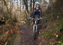Übende Mountainbike des Mannes im Wald Lizenzfreie Stockbilder
