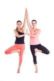 Übende Yogaübungen in der Gruppe/Baum werfen - Vrksasana auf Stockbilder