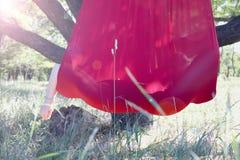 Übendes Fliegeyoga des schönen Mädchens am Baum Hoch entwickeltes Yoga stockfotos