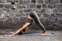 Übendes Yoga Adho Mukha Svanasana der Frau gegen eine Backsteinmauer Lokalisiert auf Weiß Stockfotografie