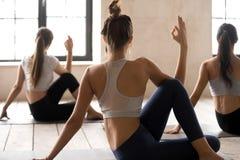 Übendes Yoga der Frauengruppe, Haltung Ardha Matsyendrasana stockfotografie