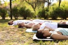Übendes Yoga der Gruppe von Personen im Park, am sonnigen Tag stockfotos