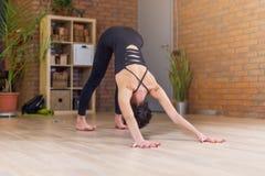 Übendes Yoga der jungen kaukasischen Frau, das abwärtsgerichtete Hundeposition tut Lizenzfreie Stockbilder