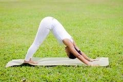 Übendes Yoga der Schönheit im Park Lizenzfreies Stockbild