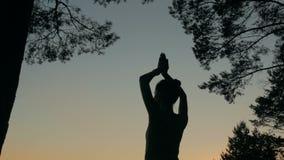 Übendes Yoga des Frauenschattenbildes im Wald nach Sonnenuntergang stock video