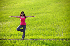 Übendes Yoga des Mädchens, stehend auf dem Paddygebiet Lizenzfreies Stockbild