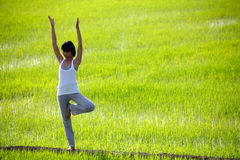 Übendes Yoga des Mädchens, stehend auf dem Paddygebiet Lizenzfreies Stockfoto