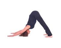 Übendes Yoga/verfolgt unten Haltung - Adho Mukha Svanasana Stockbilder