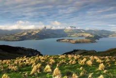 Lyttleton Hafen, Christchurch, Neuseeland stockbilder