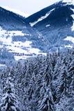 Über den Bäumen in Österreich lizenzfreie stockbilder