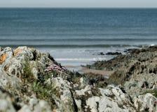 Über den Felsen zum Meer lizenzfreies stockbild