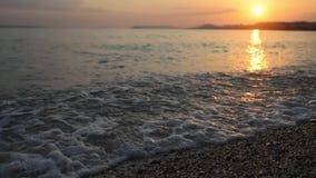 Über die Wellen niedrig fliegen, die in Ufer kommen stock video